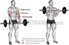 The EZ bar reverse curl is great for building your forearms and upper arms. Unlike what most people think, it targets your brachioradialis, not your biceps. Good Back Workouts, Back Exercises, Gym Workouts, Stomach Exercises, Training Exercises, Best Shoulder Workout, Best Chest Workout, Forearm Workout, Biceps Workout