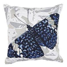 Rapee Mariposa Cushion Blue 45 X 45 cm Cushions For Sale, Reading Room, Spotlight, Throw Pillows, Blue, Australia, Shopping, Collection, Color