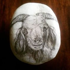 "RM 10 L'p - goat 02 3"" x 2.5"" charcoal / pencil sketch on stone"