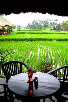 I have dreams about this place #ubud #Ubud #Bali Like our FB page: https://www.facebook.com/BuddhaWear
