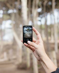 """ plans this weekend— leaving notifications and digital distractions behind and hitting the trails with Palm instead. Palm Phone, How To Plan, Digital, Gadgets, Twitter, Instagram, Gadget"