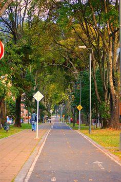 Bogotá es un ejemplo de vías públicas para la conducción de Bicirutas. Colombia