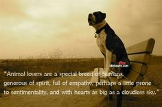 To my fellow animal lovers.
