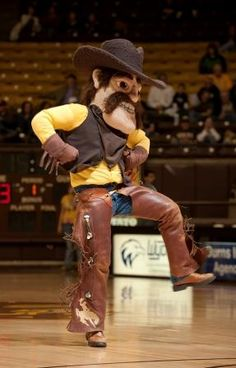 Pistol Pete Go Pokes, Pistol Pete, Wyoming Cowboys, Cowgirls, Squad, America, Painting, Travel, Shoes