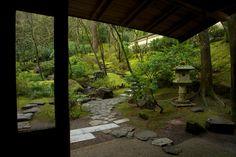 winter in the portland japanese garden