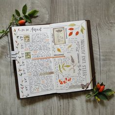 What a cute idea... Creating an art journal that reflects the flowers/plants that are growing during that week or month. A great way to remember an take note of the beauty that is always around but don't always take the time to notice...