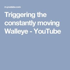 Triggering the constantly moving Walleye Walleye Fishing Tips, Youtube, Spring, Facts, Ideas, Thoughts, Youtubers, Youtube Movies