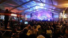 Fiestas de San Gregorio 2014 - Telde