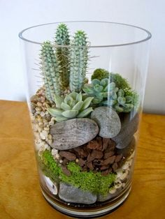 How to make cute terrariums | Craft projects for every fan!
