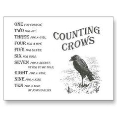 This reminds me of the book The Secret of the Seven Crows. I loved that book when I was a kid!