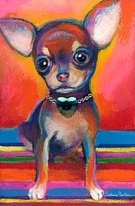 Chihuahua Dog Portrait Poster