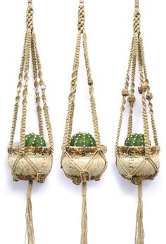 Cold Picnic — Macrame Beaded Plant Hanger