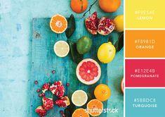 101 Color Combinations to Inspire Your Next Design – Citrus Color Palette Color Schemes Colour Palettes, Colour Pallete, Color Trends, Color Combos, Good Color Combinations, Couleur Hexadecimal, Color Meanings, Design Seeds, Colour Board