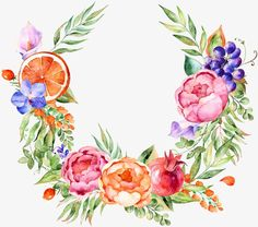 watercolor,flowers,leaf,pomegranate,grape,orange