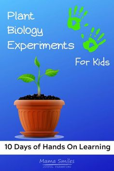 Simple hands on experiments designed to get children interested in learning about plants and plant biology. All experiments can be done using everyday materials found at home. Perfect for home enrichment activities, summer camps, and home school. #kidsactivities #scienceforchildren #childrensactivities #schoolathome #homeschool