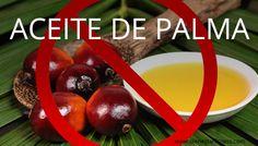 No aceite de palma  #aceite #palma #no #alimentación #nutrición #aceitedepalma #alimentosnocivos #salud  http://www.bienestarfitness.com/nutricion/aceite-de-palma/