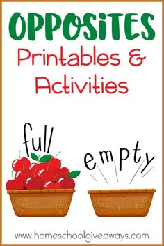 Opposites Printables and Activities
