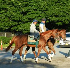 California Chrome and Victor