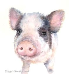 This watercolor pig painting is by animal artist Teresa Silvestri.   Available as  a cute art print and greeting cards. Perfect for the pig art nursery and farmhouse decor!  To view more animal art by Teresa Silvestri, visit www.SilvestriStudios.com   (Photo reference thanks to Lara Ianuzzi)