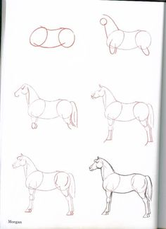 How-To-Draw-Horses - ~*Horse Heaven*~