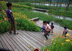 Minghu Wetland Park by Turenscape