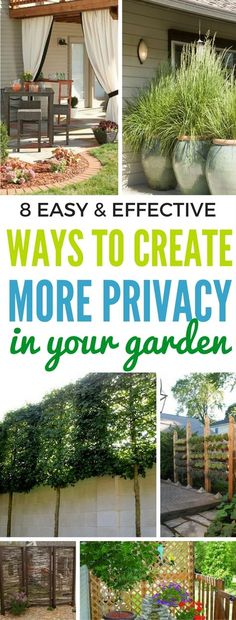 8 Easy And Effective Ways To Tighten Up The Privacy In Your Yard - Learn to create more privacy in. Privacy Plants, Garden Privacy, Outdoor Privacy, Backyard Privacy Trees, Outdoor Projects, Garden Projects, Container Gardening, Gardening Tips, Hydroponic Gardening