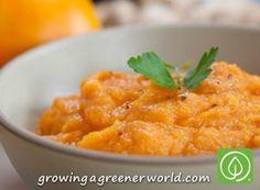 Ginger Maple Sweet Potato Puree - Growing A Greener World TV
