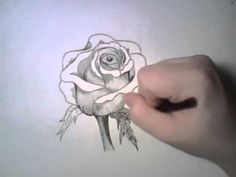 imagenes de como dibujar una rosa - Buscar con Google