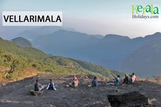 #Explore_the_Unexplored - Travel Series Destination 8: Vellarimala, Kozhikode  Vellarimala is a mountain range in Kerala,spread across Thiruvambady Panchayat in Kozhikode district and Meppadi Panchayat in Wayanad district. Vellarimala forms a part of a high hill range of what is otherwise known as Camel's Hump Mountains, a part of the Western Ghats. The tallest peak in this range is called Vavul Mala which has an altitude of 2339m.
