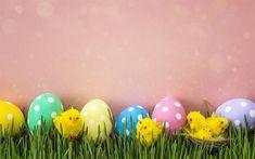 Indir duvar kağıdı Bahar dekorasyon, pembe arka plan, Paskalya yumurtaları, küçük tavuk, Paskalya