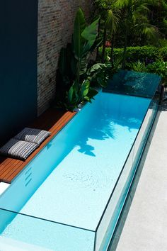 Rozelle, the glass edged pool flanked by tall leafy plants, creating privacy and a sense of enclosure