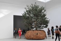 Venice – The National Pavilions at the Venice Biennale Through November 22nd, 2015