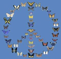 Peace, Butterflies