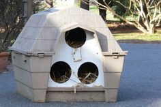 Dog house converted in to outdoor cat shelter