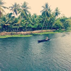 A backwater is a part of a river in which there is little or no current. It refers either to a branch of a main river, which lies alongside it and then rejoins it, or to a body of water in a main river, backed up by an obstruction such as the tide or a dam.  #Kerala #Alleppey #Backwaters #Travel #Travelogue