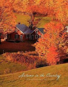 Autumn love......