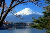 Mt Fuji Day Trip including Lake Ashi Sightseeing Cruise from Tokyo-Tokyo-Japan-Day Trips