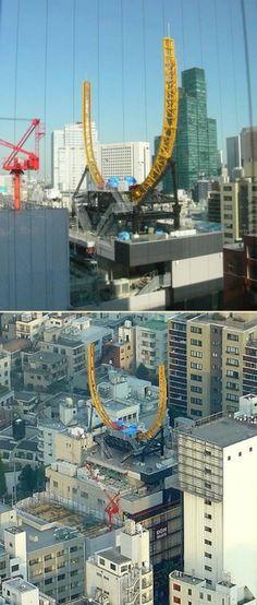 rooftop roller coaster