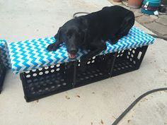 Ketchin' Up With Miss Riley: HOW TO: DIY Crate Benches Milk Crate Bench, Milk Crate Storage, Milk Crates, Crate Crafts, Diy Crafts, Diy Rack, Making A Bench, Plastic Crates, Classroom Themes
