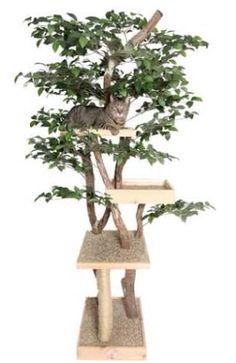 Árvore para Gatos