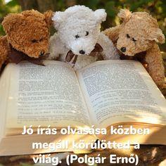 """""""Jó írás olvasása közben megáll körülötted a világ."""" (Polgár Ernő) Forever Book, Love Book, Book Worms, Worship, Texts, Bb, Reading, Quotes, Books"""