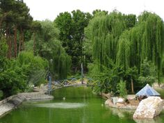 Eram Park,Tehran,Iran