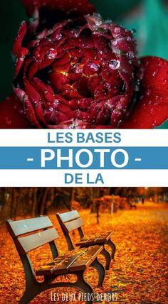 Technique Photo, Photo Tips, Belle Photo, Photography Tips, Your Photos, Photo Art, Good Things, Make It Yourself, Voici