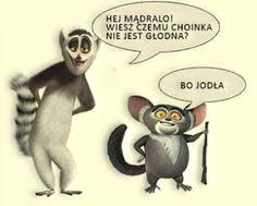 Penguins Of Madagascar, Funny Mems, Mood Tracker, Man Humor, Disney Pixar, Best Quotes, Funny Animals, Haha, Memes