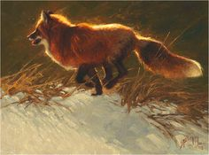 red fox painting by Greg Beecham