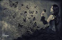 Where Do Butterflies Live  ? by Bojan1558