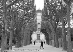 Jardin des Plantes in Black and White in Paris, France from www.kevingeorge.photoshelter.com