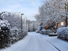 Moving home this winter? Take extra care when packing and preparing for the Domestic House Removals team to complete your removal. Places Ive Been, Places To Go, House Removals, Moving Home, Climate Change, Yorkshire, How To Remove, Snow, Winter