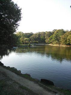 大きな池です!!落ち着いた風景がいいです!