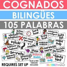 Bilingual Cognates Word Wall